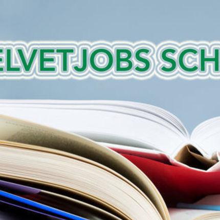 VelvetJobs Scholarship 2017