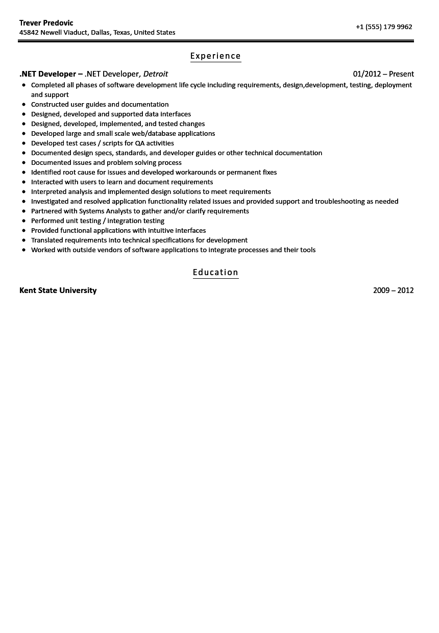 net developer resume sample