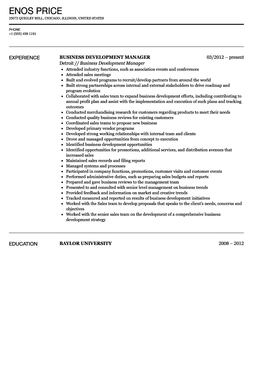 sample cv business development manager