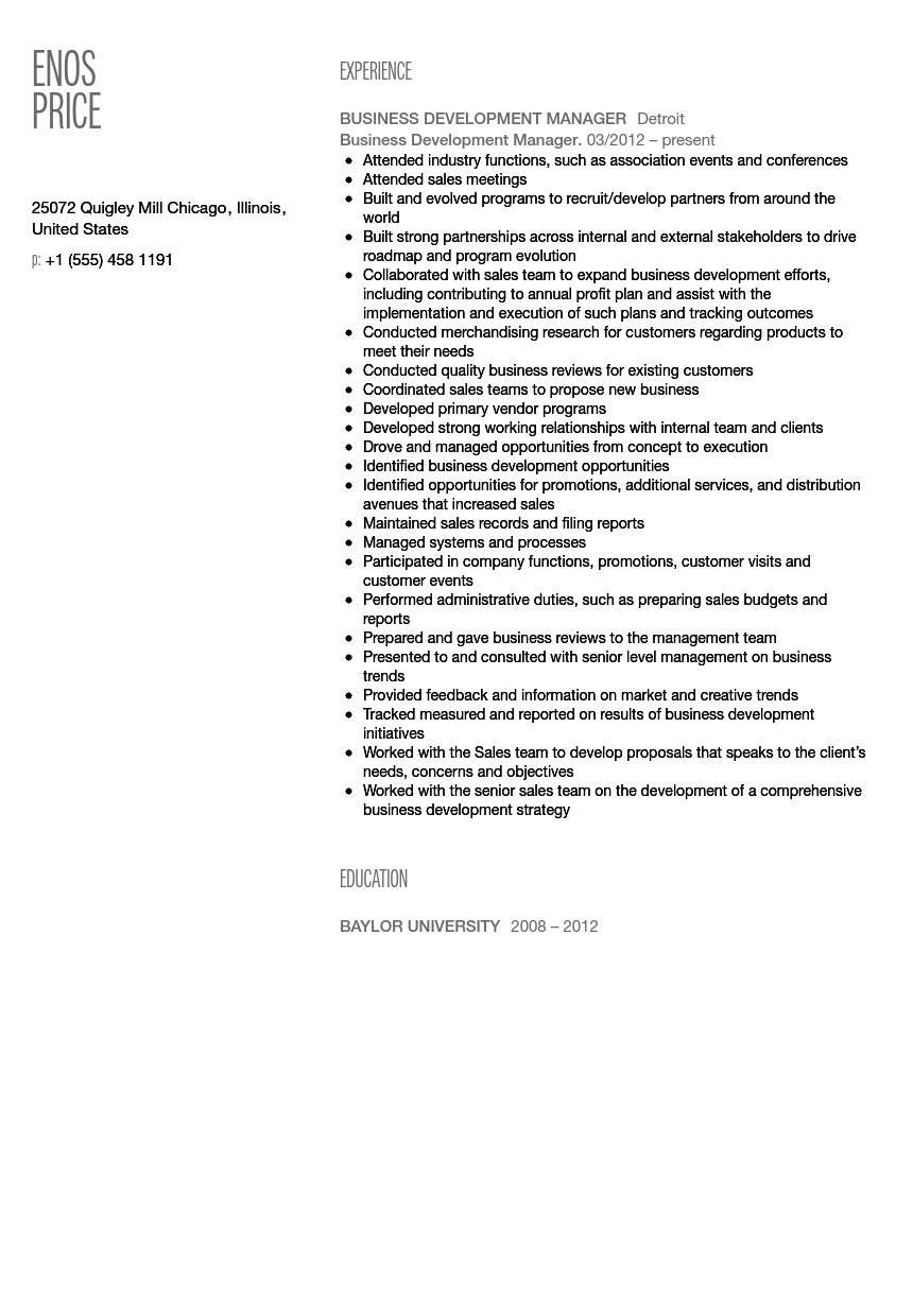 business development manager resume sample - Business Development Resume Sample