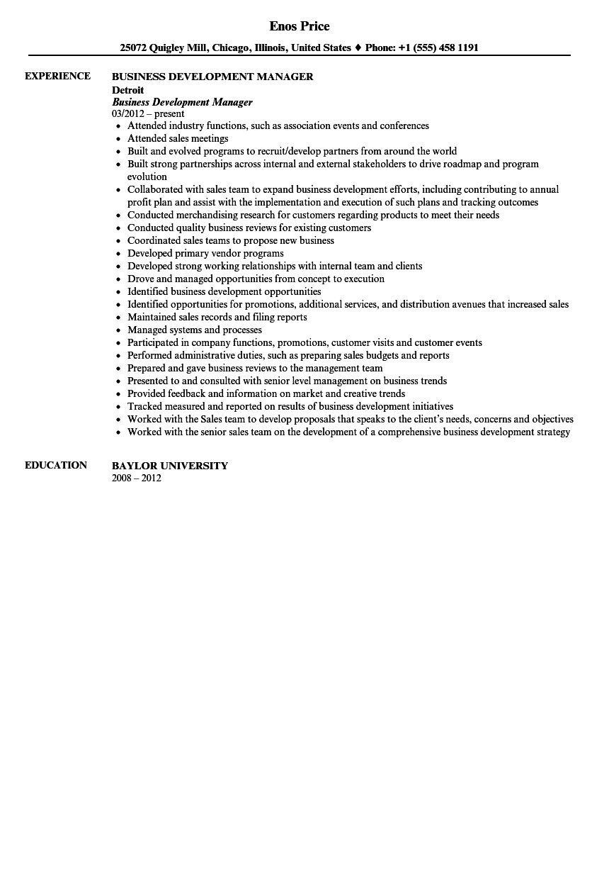 Business Development Manager Resume Sample  Business Development Resumes