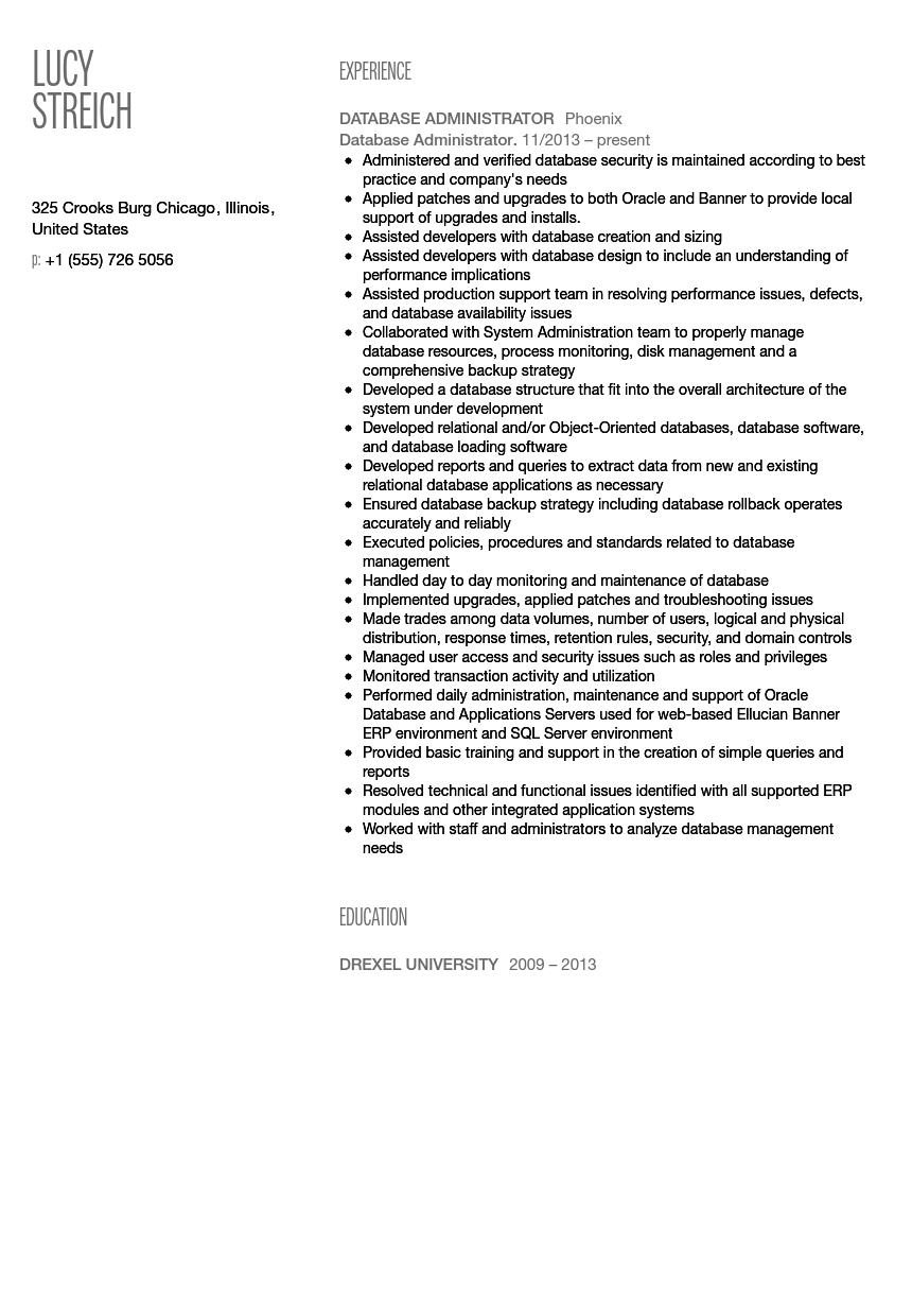 Bon Database Administrator Resume Sample