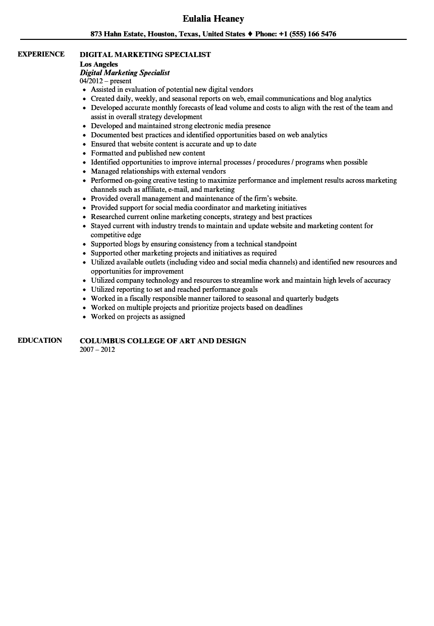 Digital Marketing Specialist Resume Sample