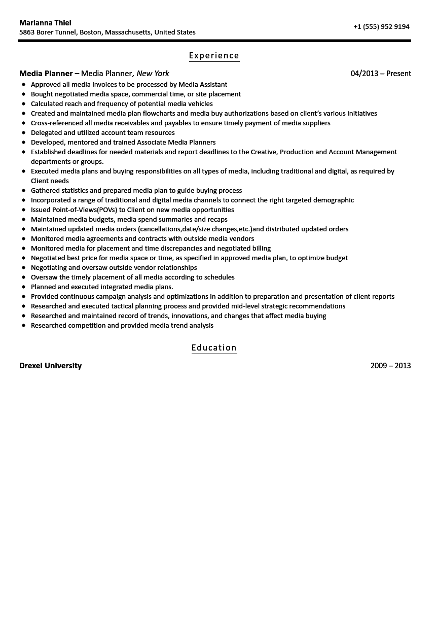 Awesome Media Planner Resume Sample