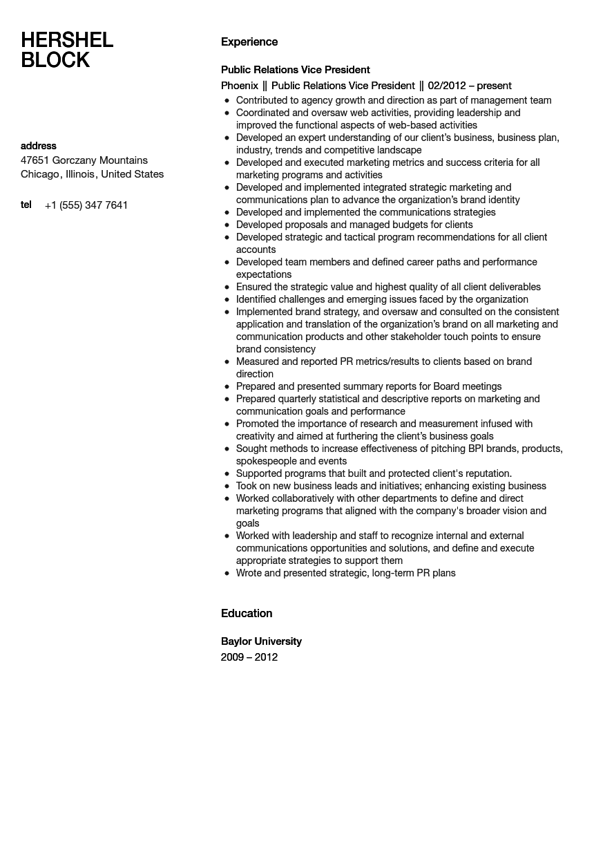 Public Relations Vice President Resume Sample